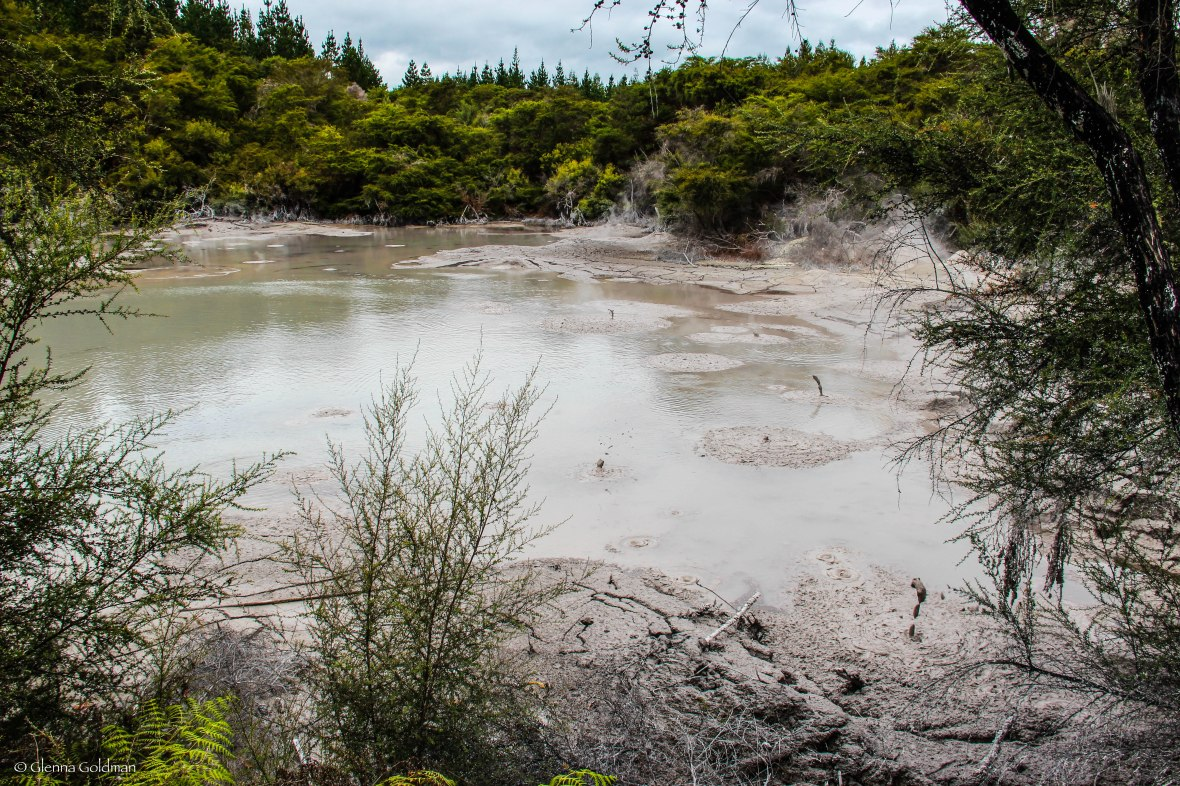 Rotorua Mud Pools, New Zealand