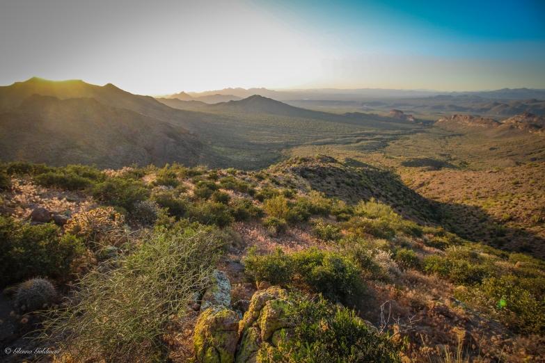 Desertscape-2