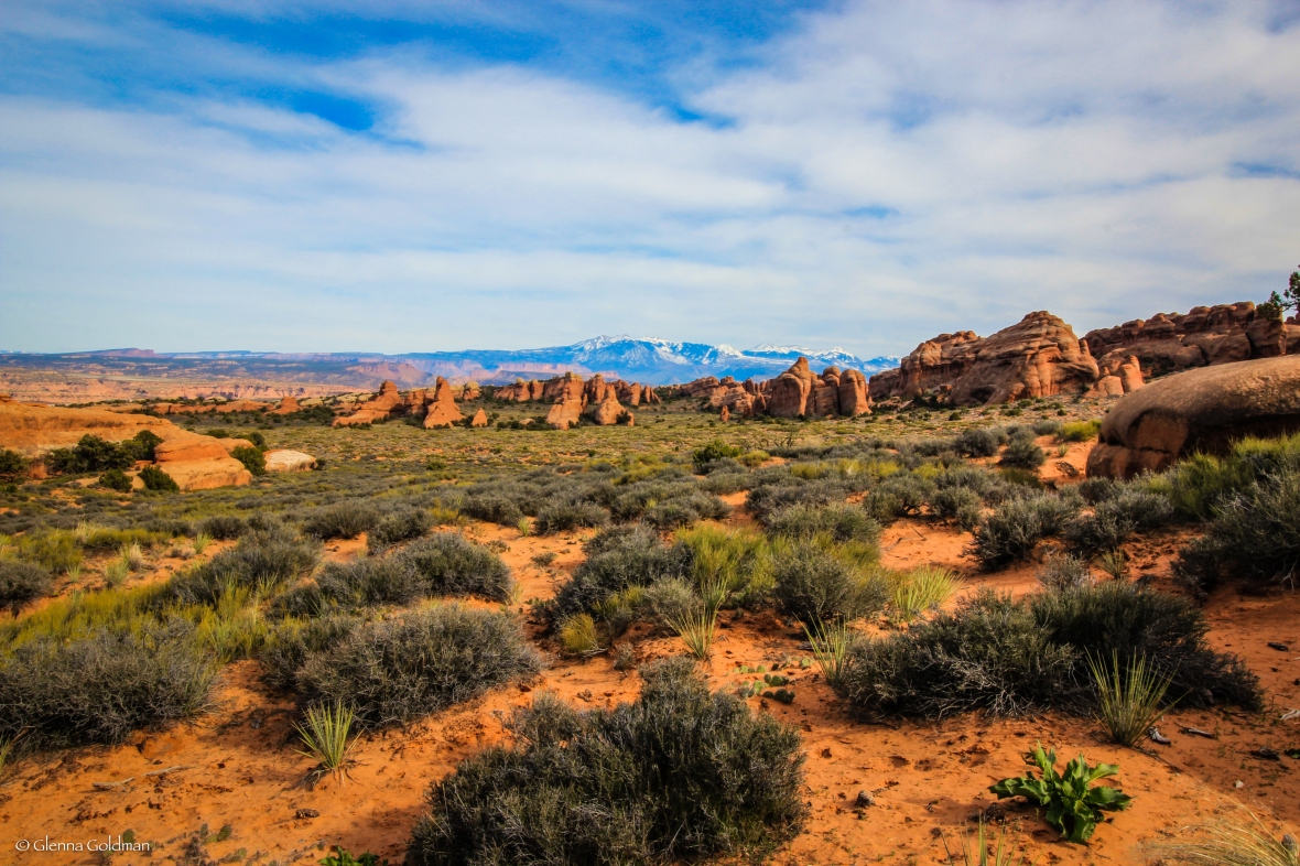 Moab, Arches, National Park, Desert