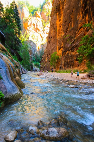 RT2016-Zion-Small-33