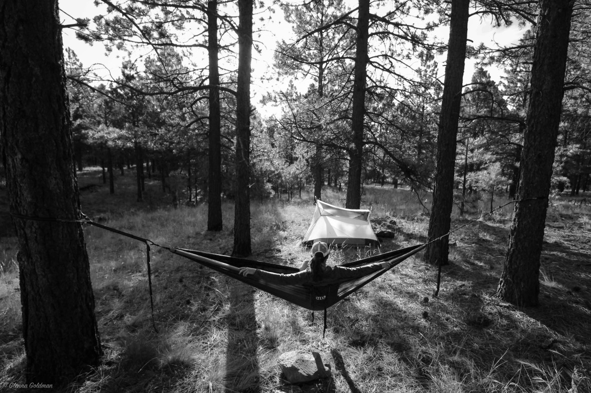Hammock in Flagstaff, Arizona