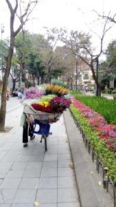 Hanoi-Flower-Bike