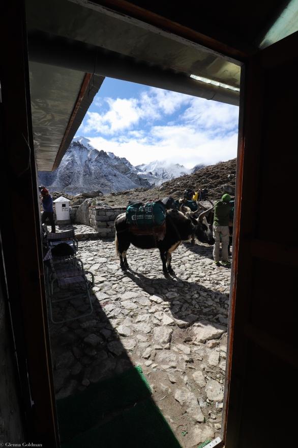Nepal2019-WM-145
